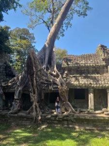 Pheah Khan en Angkor Thom