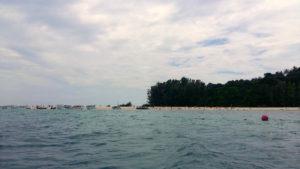 Illa Bamboo