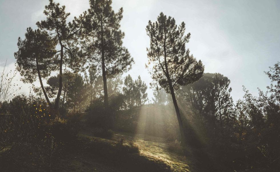 Andrea Rodríguez: Fotografía de paisaxe en Ourense